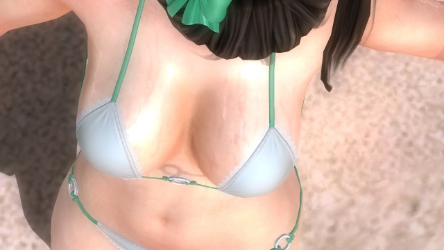 DEAD OR ALIVE 5 Last Round_20170108144903