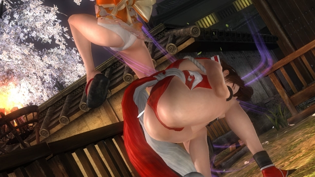 DEAD OR ALIVE 5 Last Round_20170123013932