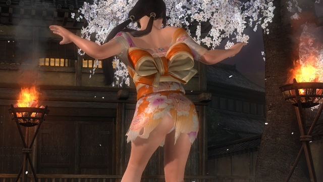 DEAD OR ALIVE 5 Last Round_20170123014048