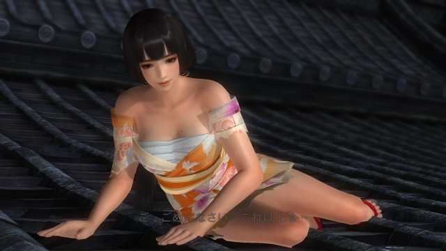 DEAD OR ALIVE 5 Last Round_20170123022421