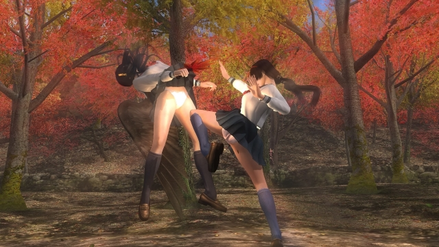 DEAD OR ALIVE 5 Last Round_20170205162302