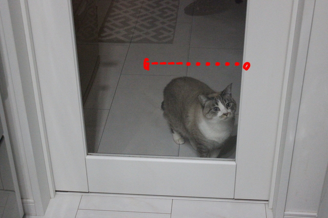 WnXRNrTQ9kSfx_91481026053_1481026097.jpg
