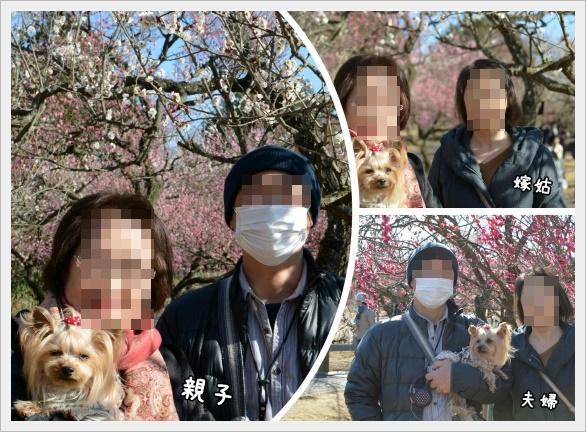 FotorCreated_201702062249461f8.jpg