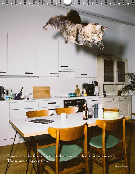 Katzenkalender2017_spread02