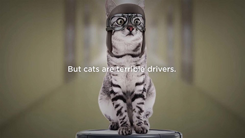 Neato-Cat-Driver-Commercial