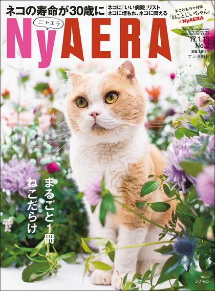 NyAERA123116