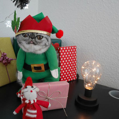 Santas-Little-Helper-Herman-The-Scaredy-Cats-First-Christmas-4