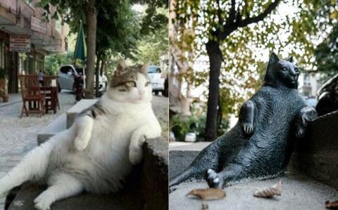 Tombili-cats-istanbul-statue-large_trans++qVzuuqpFlyLIwiB6NTmJwfSVWeZ_vEN7c6bHu2jJnT8