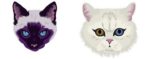 catmen1