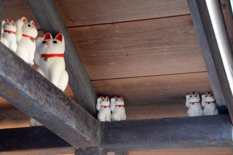 gotokuji10_010317