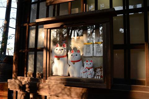 gotokuji5_010317