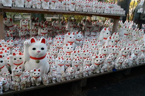 gotokuji7_010317