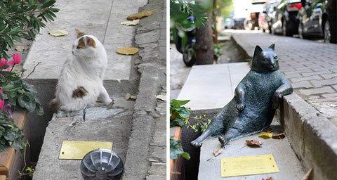 sculpture-of-istanbuls-social-media-phenomenon-cat-stolen-1478611951561
