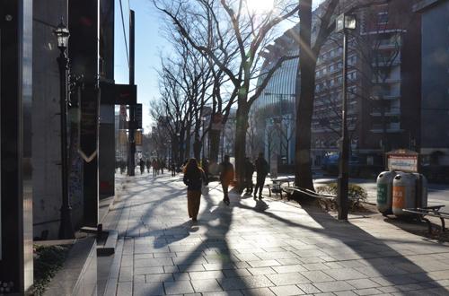DSC_7245_2.jpg