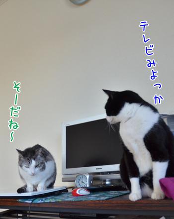DSC_7639_2.jpg