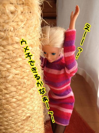 2QLhTGTO54eXQqp1485513828_1485513959.jpg