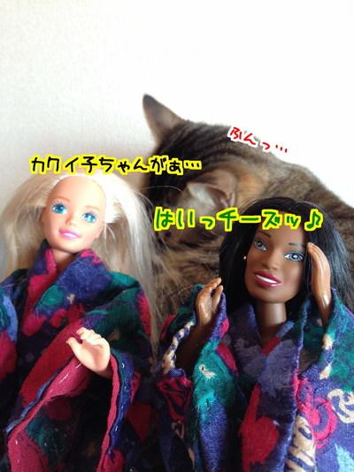 YrbIna71jmMHXMM1484045439_1484045630.jpg