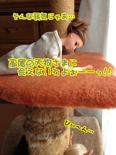 d1piYbv2OyxfwJa1485514040_1485514333.jpg