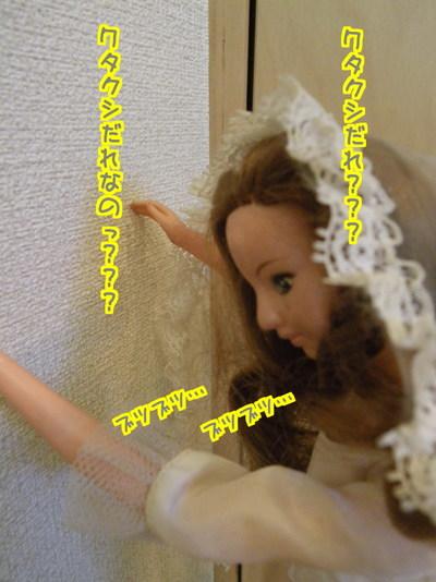 yLxz9jJMYf1rbf31481024282_1481024496.jpg