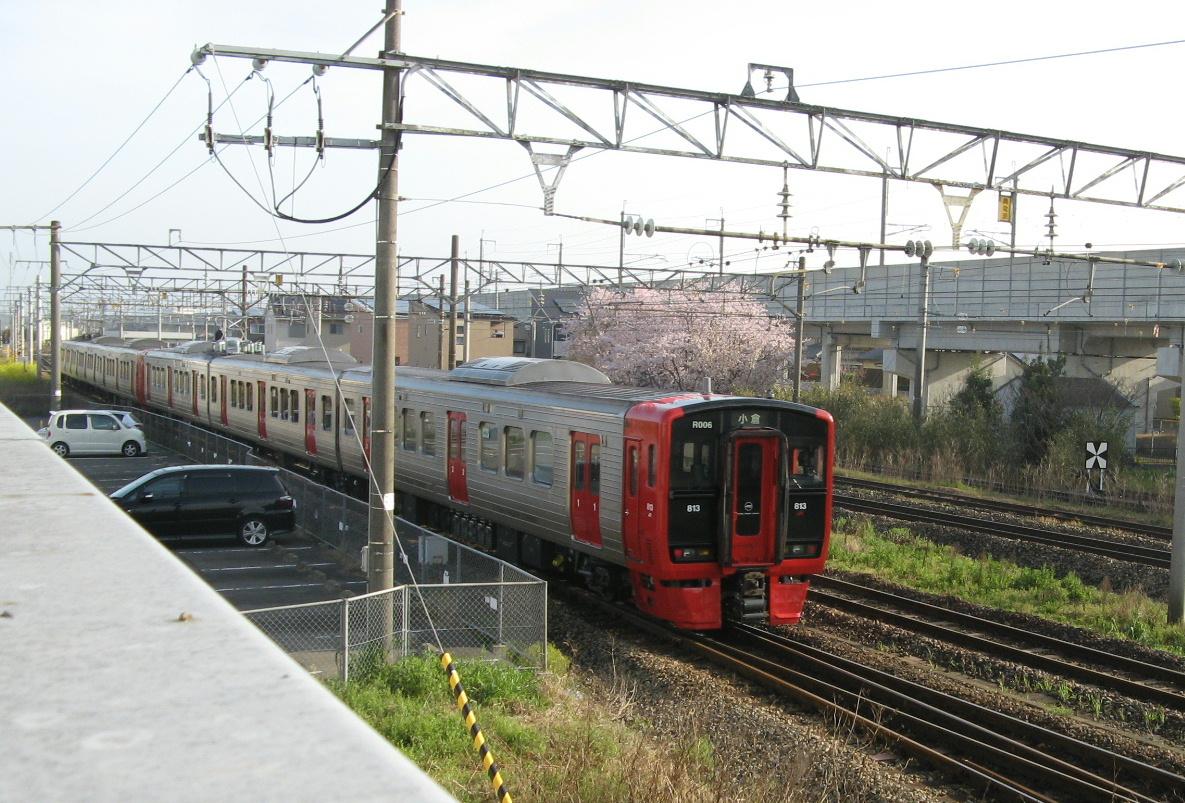 桜と813系電車の写真