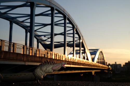 鎌倉さんがぶっ壊した丸子橋が直っていることに安心したシン・ゴジラ第二形態、蒲田くん