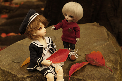 BJD CROBI-DOLL, E Line, Toriのロビンと、WITHDOLL、Happy Ending Story - Wolf Rudyのルディ