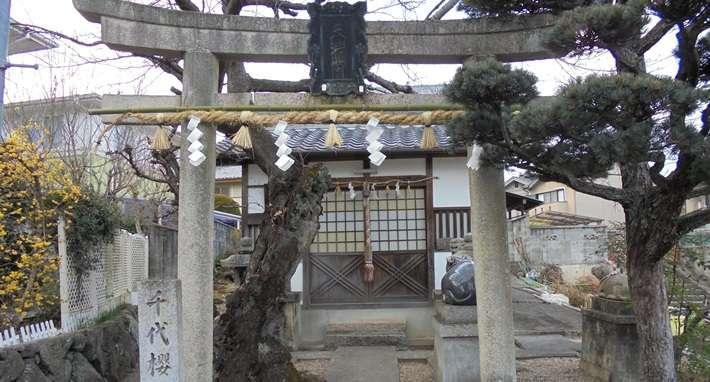 chiyozakura-tenmangu-image01.jpg