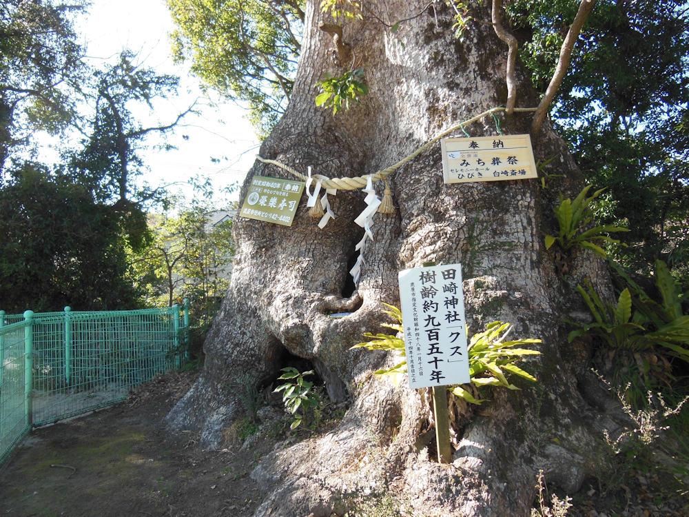 写真て楽しい。 鹿屋市 田崎神社