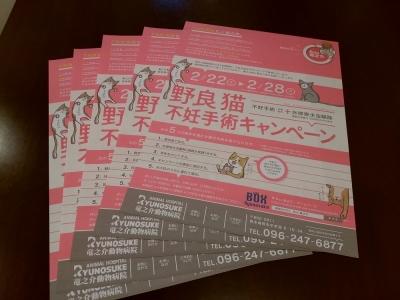 2017年2月竜之介キャンペーンポスター