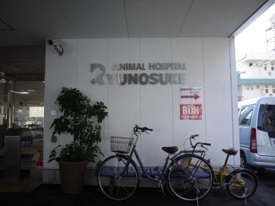 竜之介動物病院②