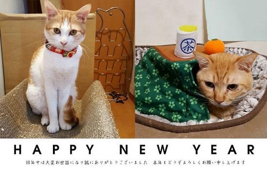newyear_20170105162401352.jpg