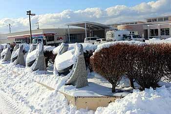 20170202_久しぶりのまとまった雪2
