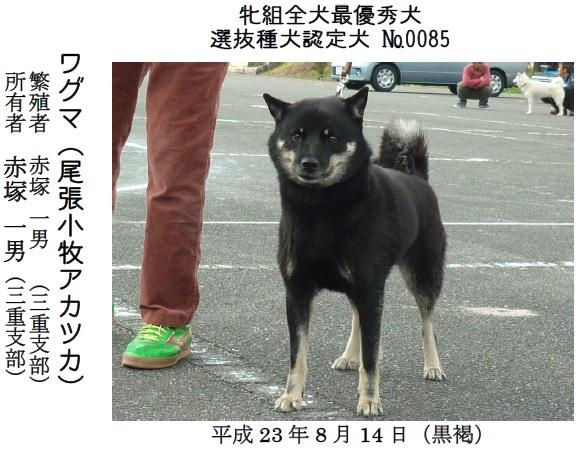 201611三重CH展-04