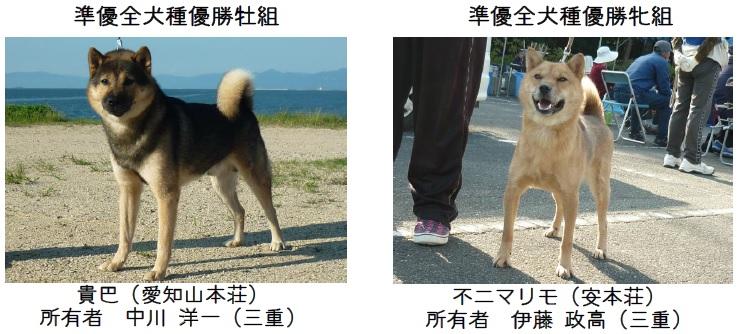 201611三重CH展-09