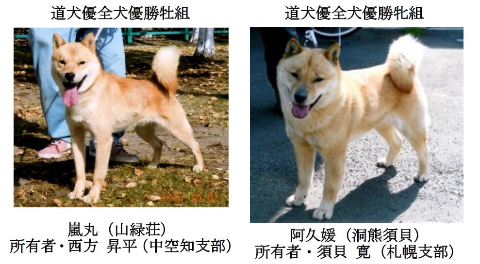 20161009中空知成績-04