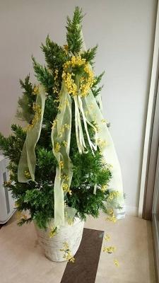 花 名古屋 ギフト 記念日 Baum