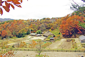 DASH村 福島 TOKIO 明雄 復興計画 高木陽介