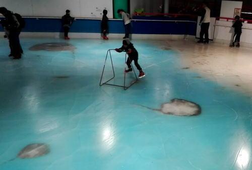 魚5000匹が氷漬けのリンク…批判殺到で閉鎖、解凍へ