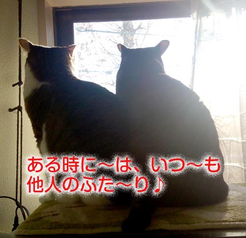 IMG_20161211_074500のコピー