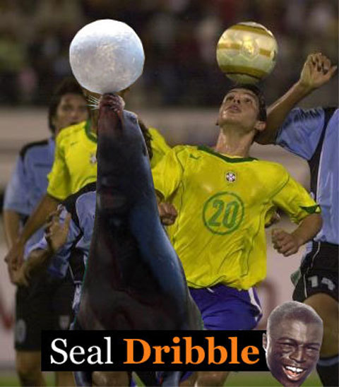 Kerlon Seal Dribble