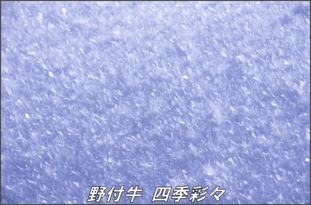 s-K5-20161130-102038-0.jpg