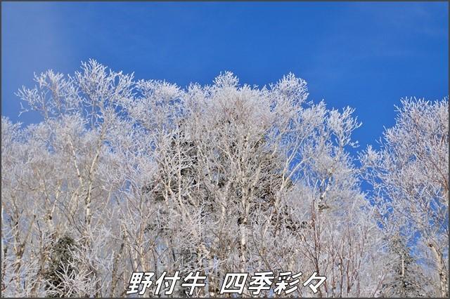 s-TG3-20161221-101854-0.jpg