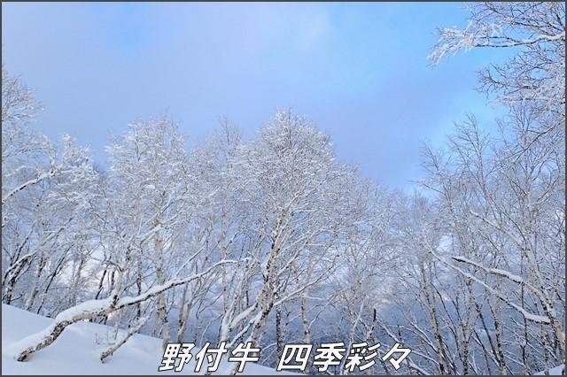 s-TG3-20170105-141232-0.jpg