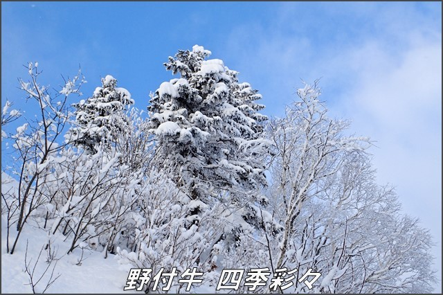 s-TG3-20170105-141401-0.jpg