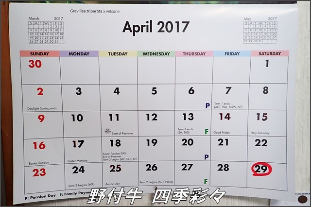 s-TG3-20170107-152621-0.jpg
