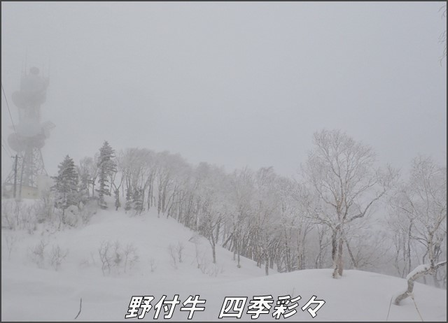 s-TG3-20170109-140206-0.jpg