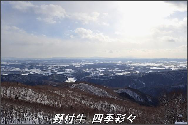s-TG3-20170112-102206-0.jpg