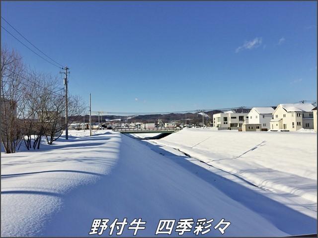 s-i6-20170110-132324-0.jpg