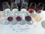 161019 (9)プレミアムチリワイン目黒_テイスティングアイテム9種(グラス)