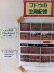 160827 (78)自園自醸紫波ワイン_ブドウ生育 - コピー